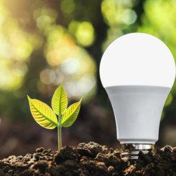 Gestão ambiental e gráficas, a importância de buscar a sustentabilidade Reproset Indústria gráfica